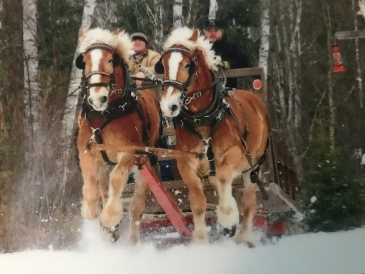mark & jake on sleigh ride